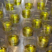 12DMMUa_degustacijske casice s uljem
